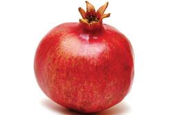 Выбор спелых плодов для лечения