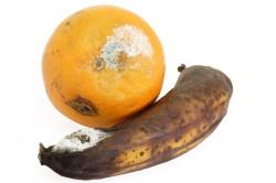 Несвежие продукты - причина расстройства желудка